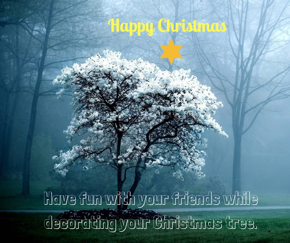 Beautiful christmas wishes for fb post