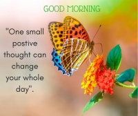 good morning wishes  image with beautiful quotes