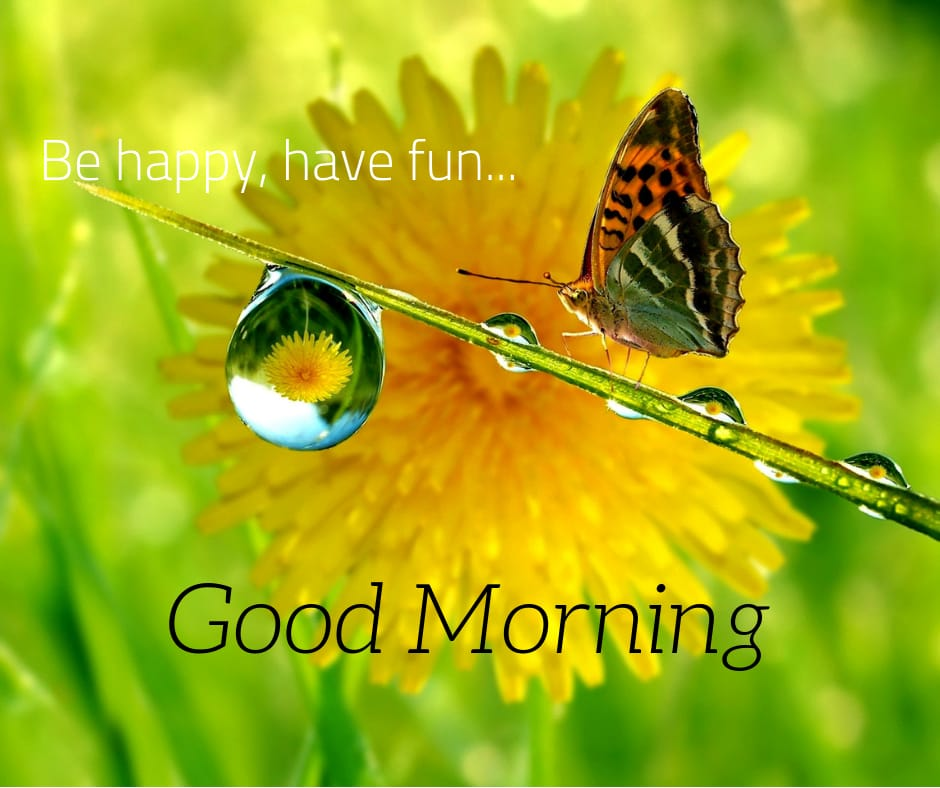 be happy have fun good morning image
