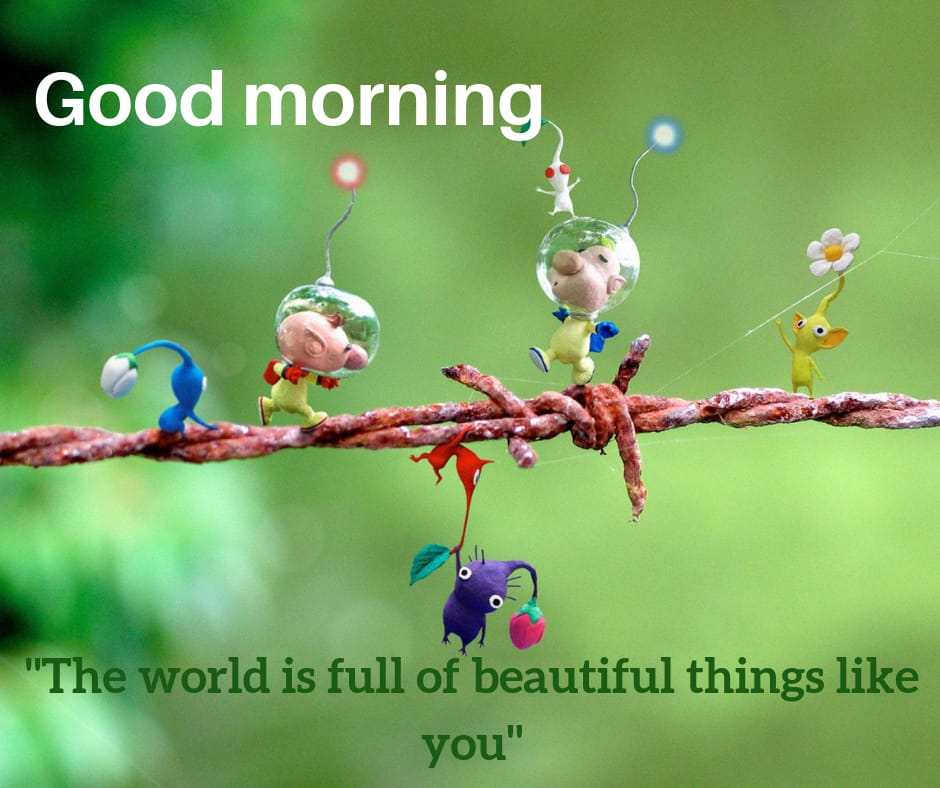 world is full of beautiful things good morning photo