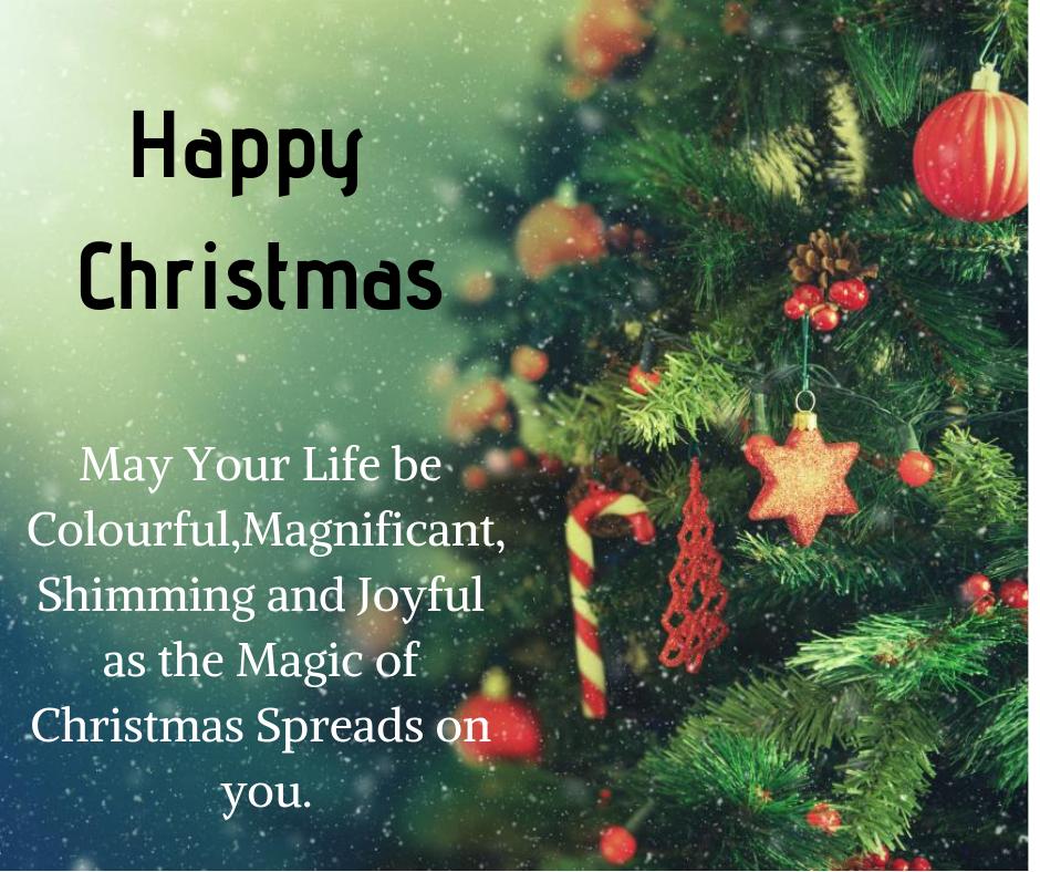 magic of christmas image for fb post
